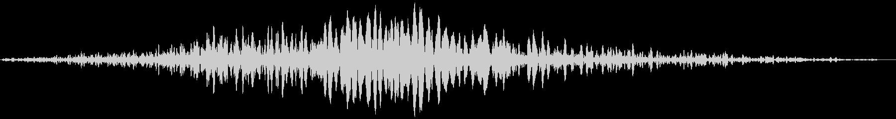 ドラゴンファイヤーウーッシュウィズ...の未再生の波形