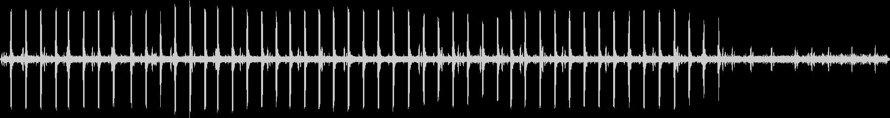 リュウキュウコノハズクが鳴く奄美大島の森の未再生の波形