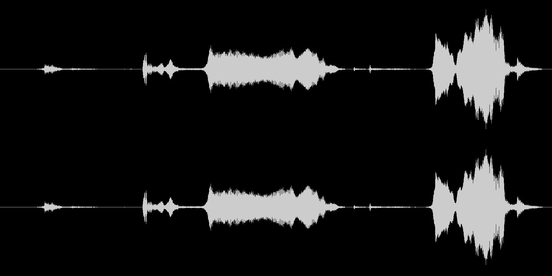 犬 GSP ワインロー05の未再生の波形