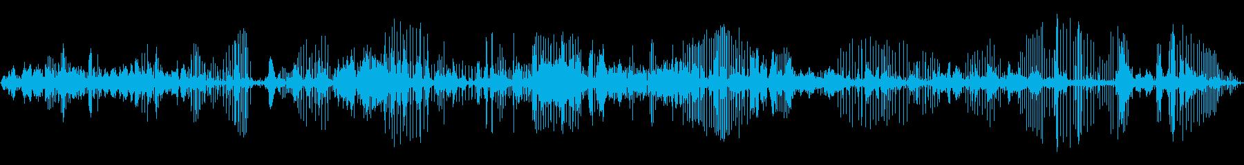 キラークジラ:水中コミュニケーショ...の再生済みの波形