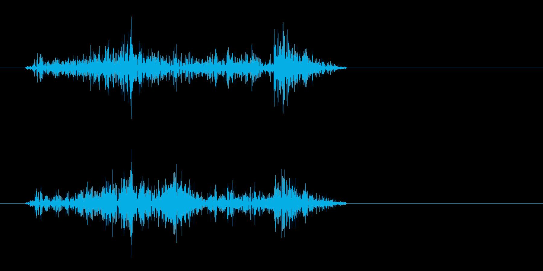 ガサッ(摩擦系)短いの再生済みの波形