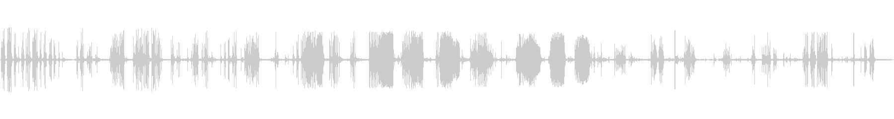 野生のタヌキ:怒っている聖歌隊、ク...の未再生の波形