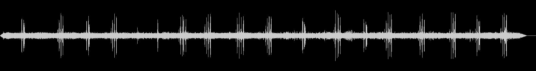川で歌うアンビエント鳥の未再生の波形