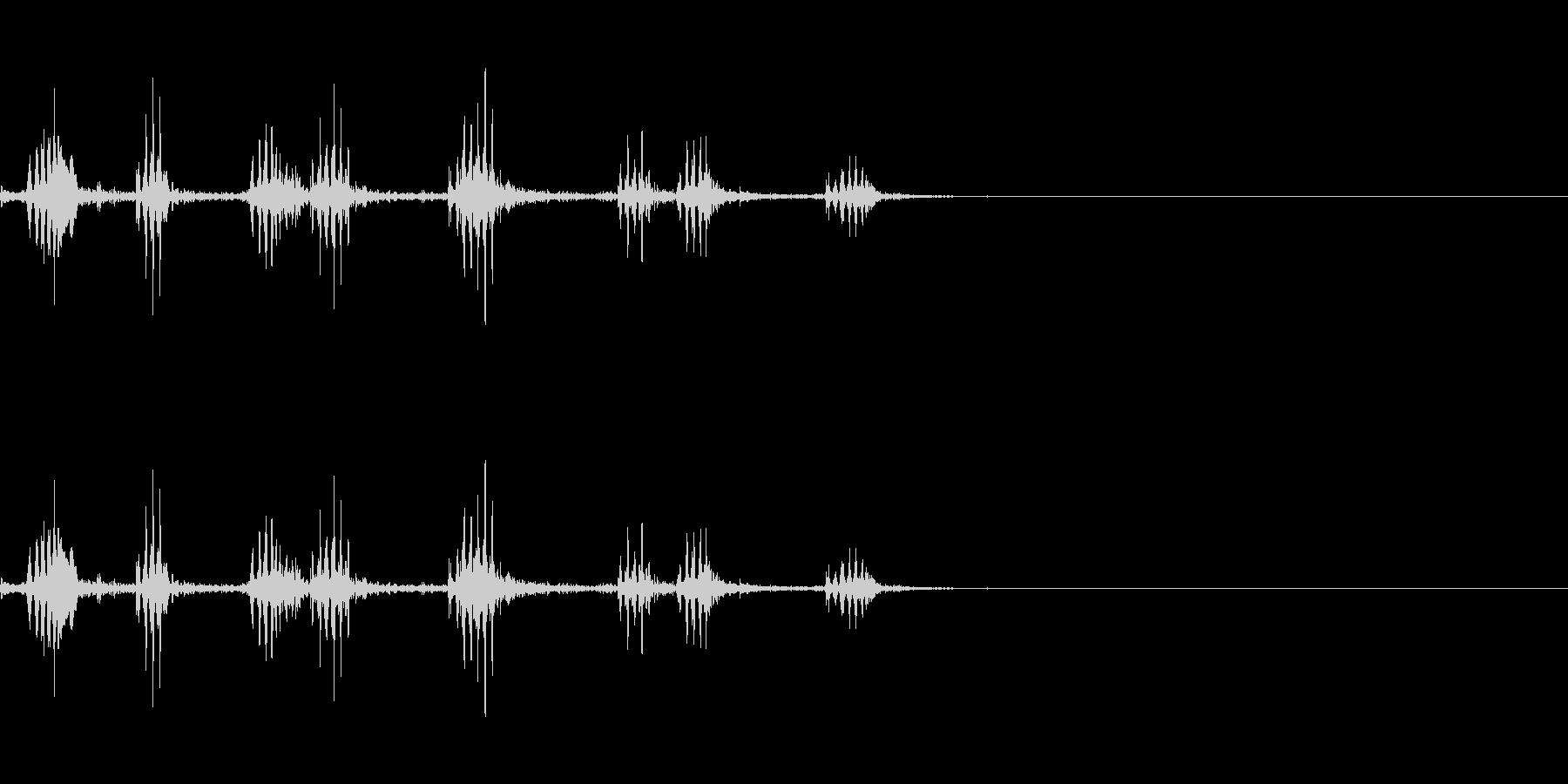 チリーフラミンゴの鳴き声の未再生の波形