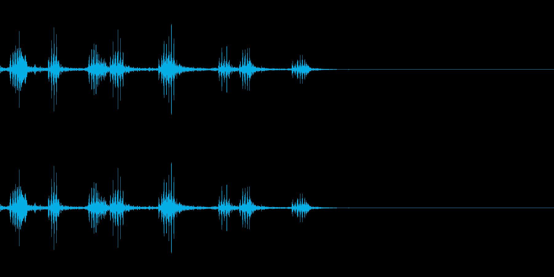 チリーフラミンゴの鳴き声の再生済みの波形
