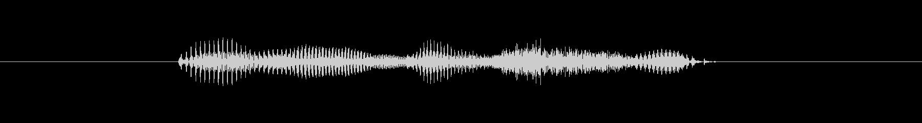 【干支】イヌ年の未再生の波形