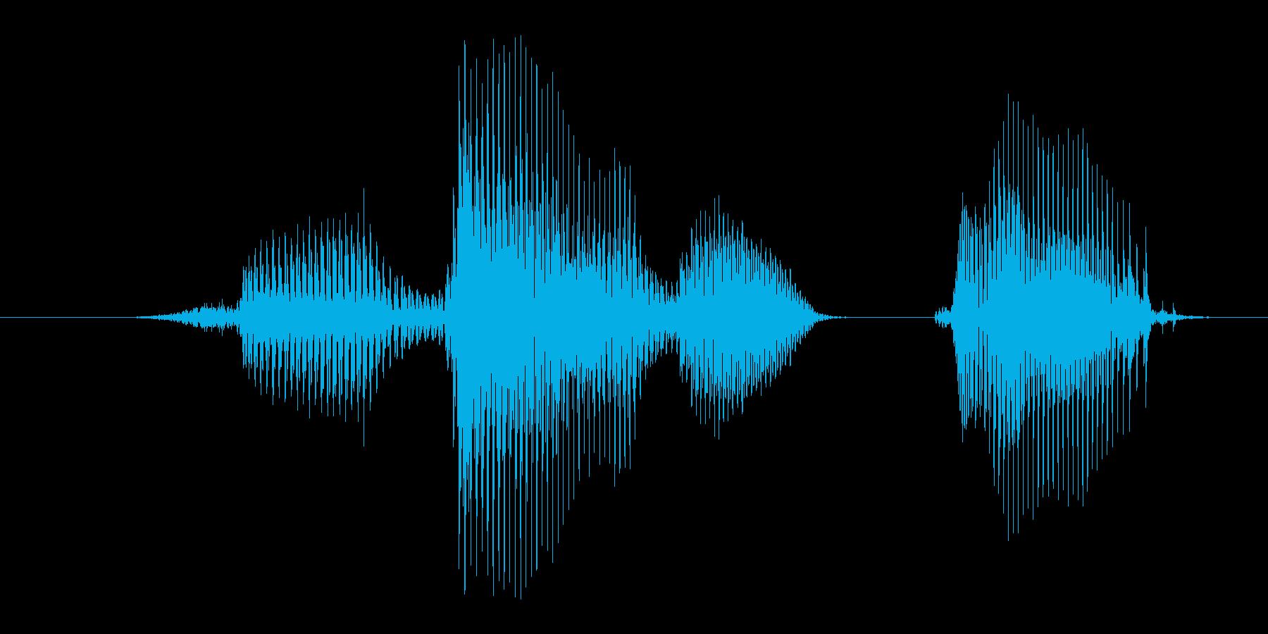 左手の再生済みの波形