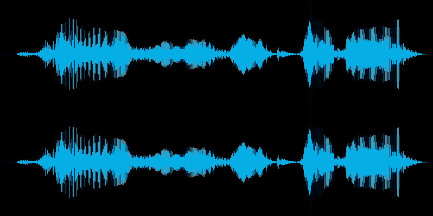 「上手にできたね」子供向けアプリ男性声の再生済みの波形