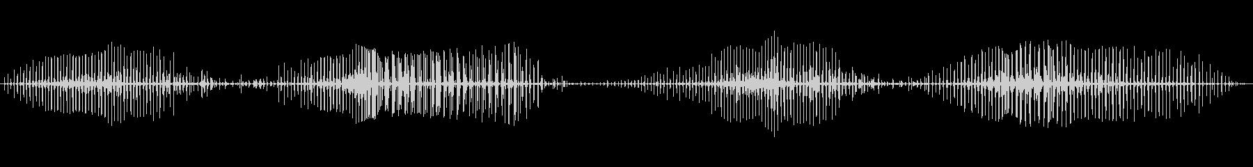 コブルストン馬でのトロットバイの未再生の波形