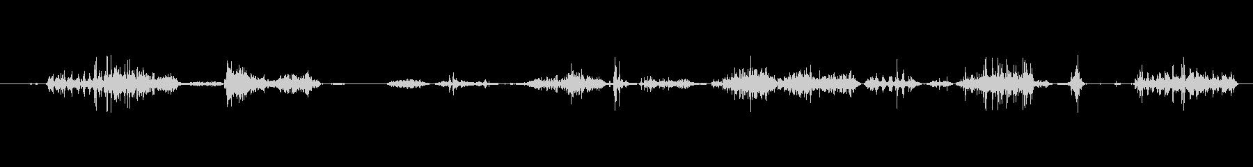 犬 ドーベルマンスナル01の未再生の波形