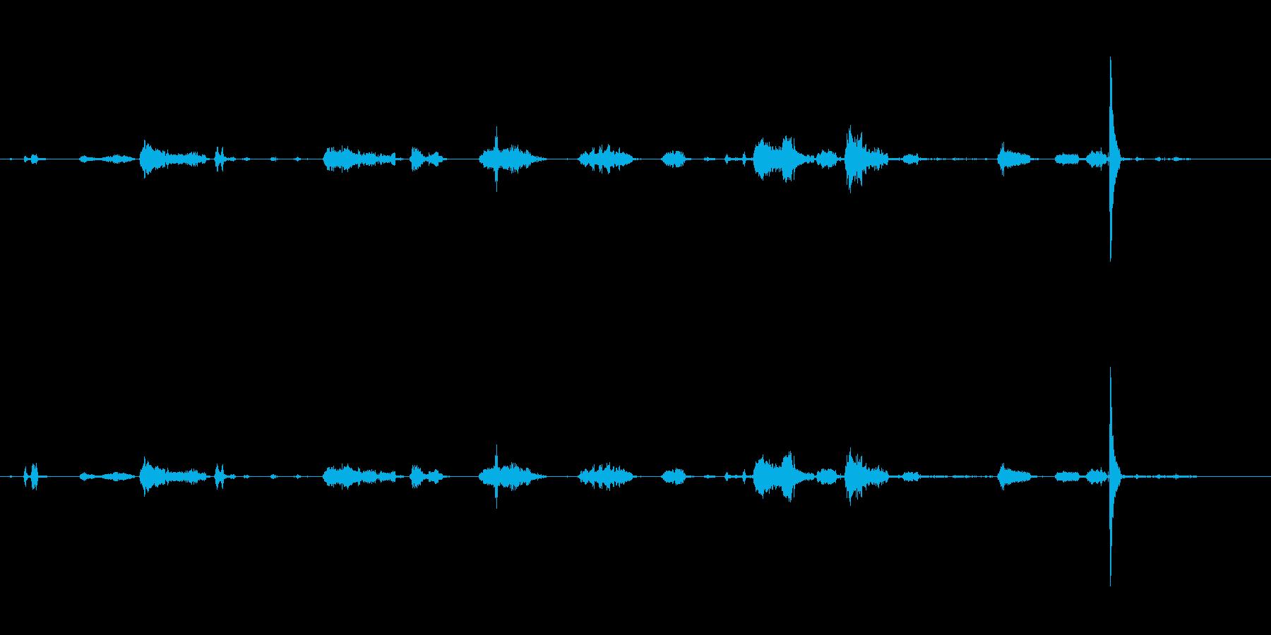 テン猫の再生済みの波形