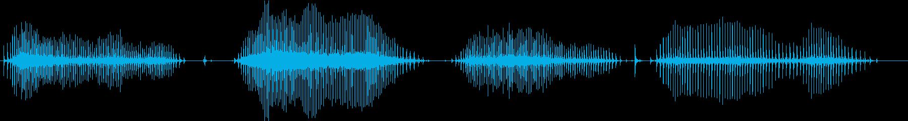 電動ハンドドリル:クラッチギアスピンの再生済みの波形