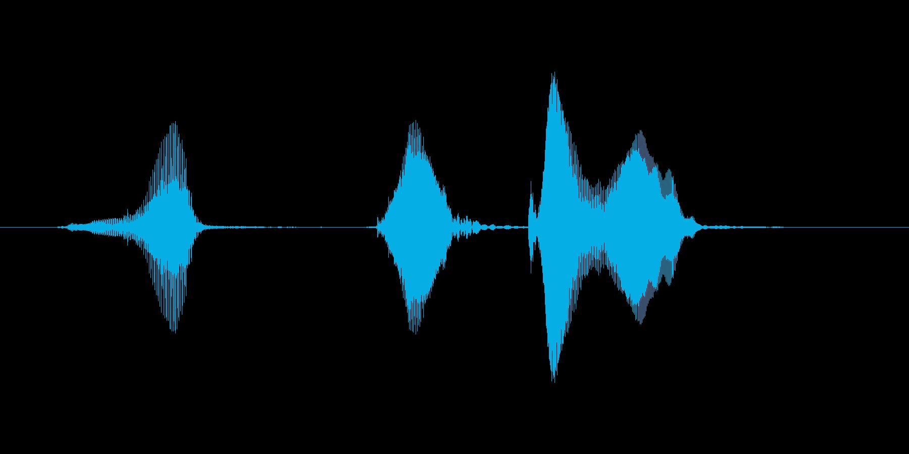 ギ、ギク!(ぎ、ぎく!)の再生済みの波形