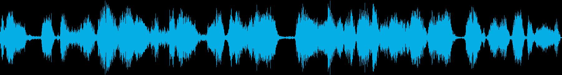 ガチョウの迷惑な怒りの再生済みの波形