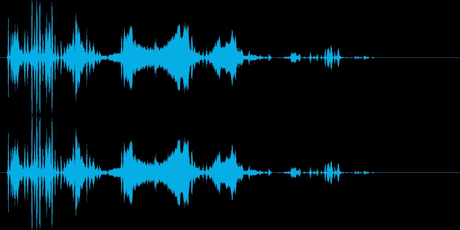 ウルフハウル、樹皮。いくつかのオオ...の再生済みの波形
