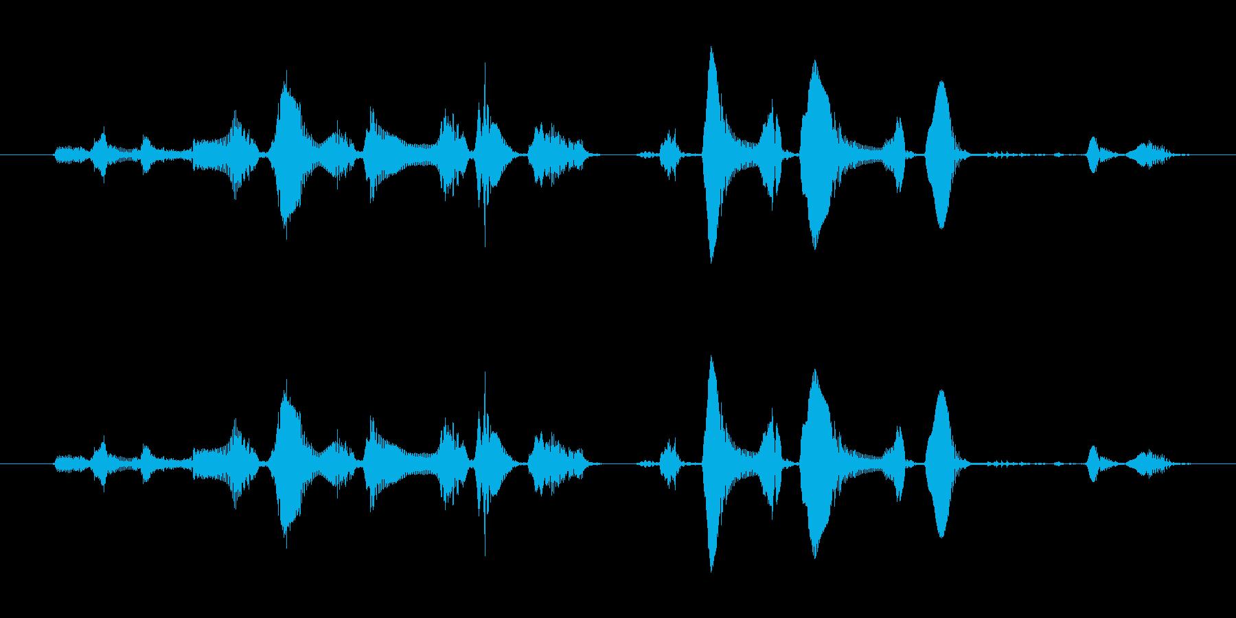 笑い声 - 4~5歳 女の子 - 32_の再生済みの波形