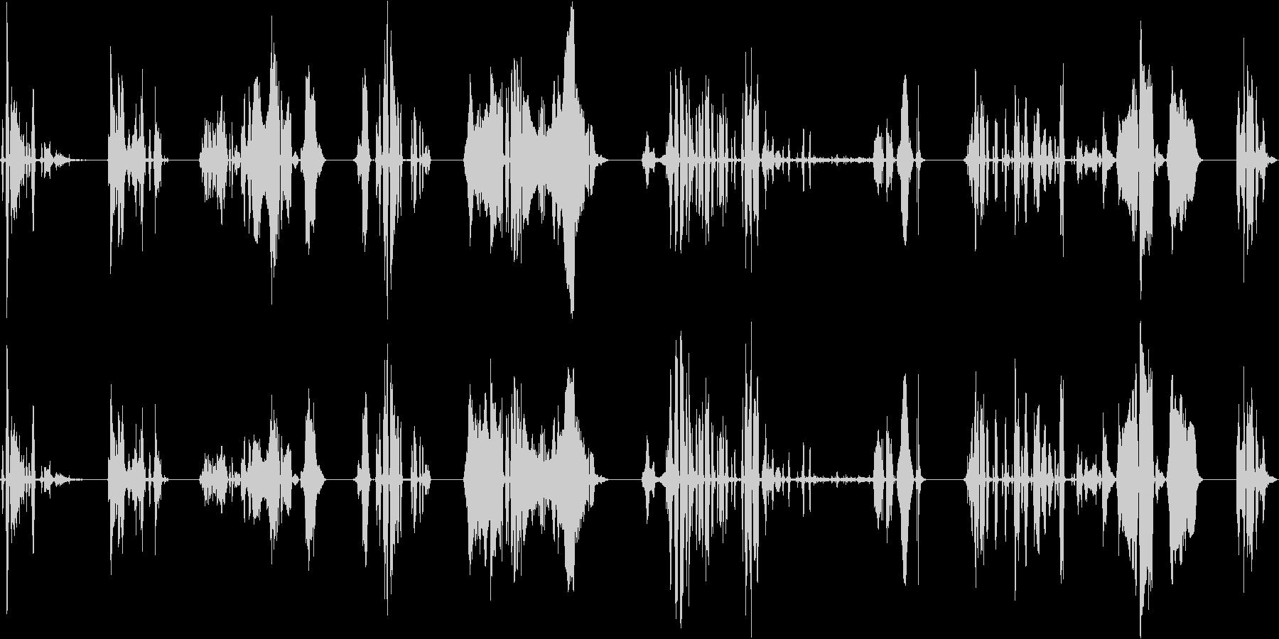 子供、2.5歳、笑い、8バージョン...の未再生の波形