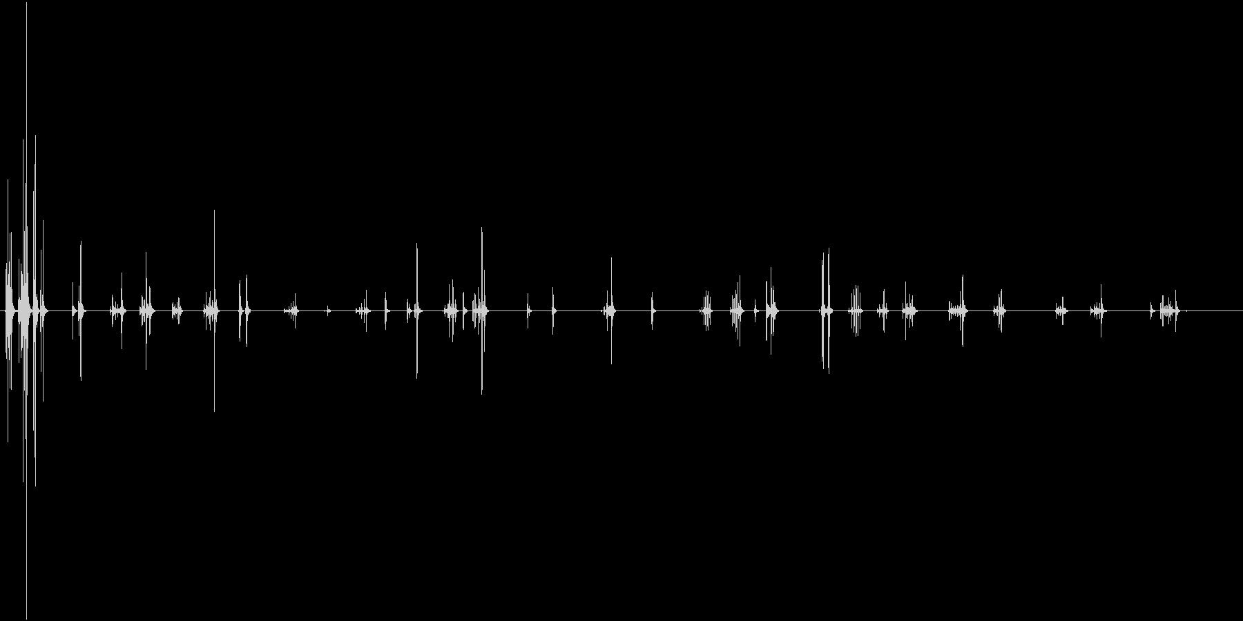 猿、オマキザルびびり。高音鳴きチャ...の未再生の波形