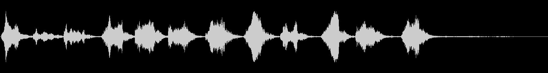 太平洋パイロットクジラ:一定の高さ...の未再生の波形
