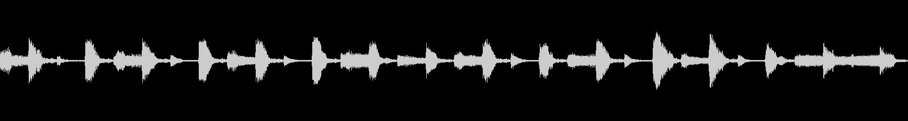 フルート/レコーダー、アコーディオ...の未再生の波形