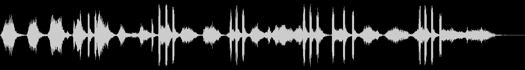 2つのベルーガクジラ:声を出す、動...の未再生の波形