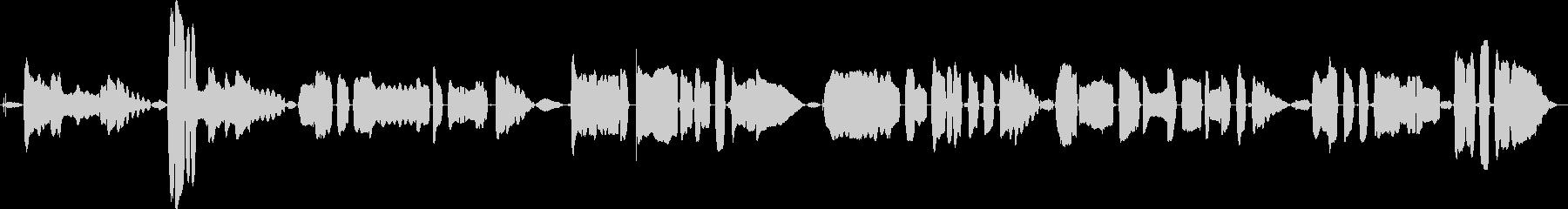 鳴き声 女性歌うジャズインプロロング01の未再生の波形