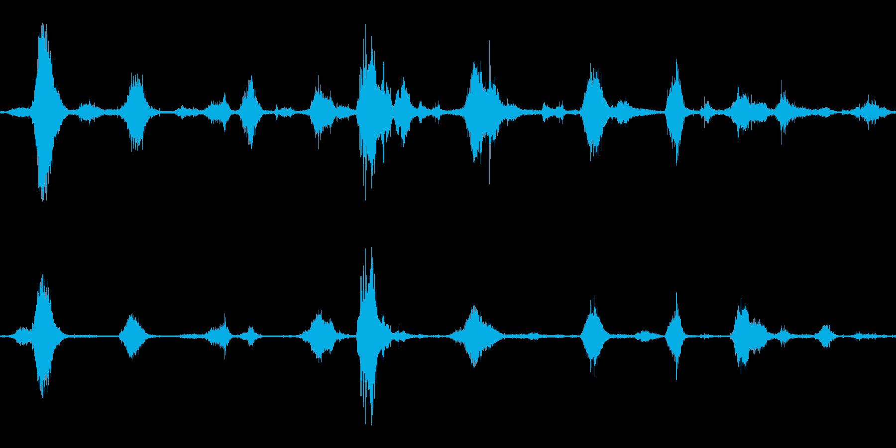 海_砂浜_鳥の声(ザザーン)の再生済みの波形