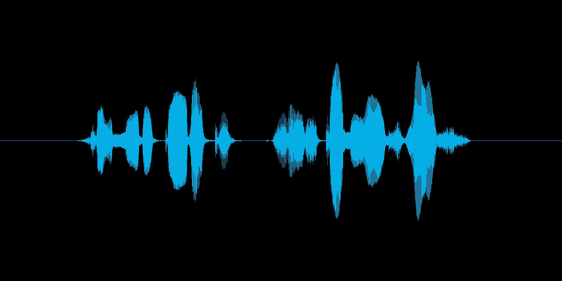 チャンネル登録よろしくお願いします!の再生済みの波形