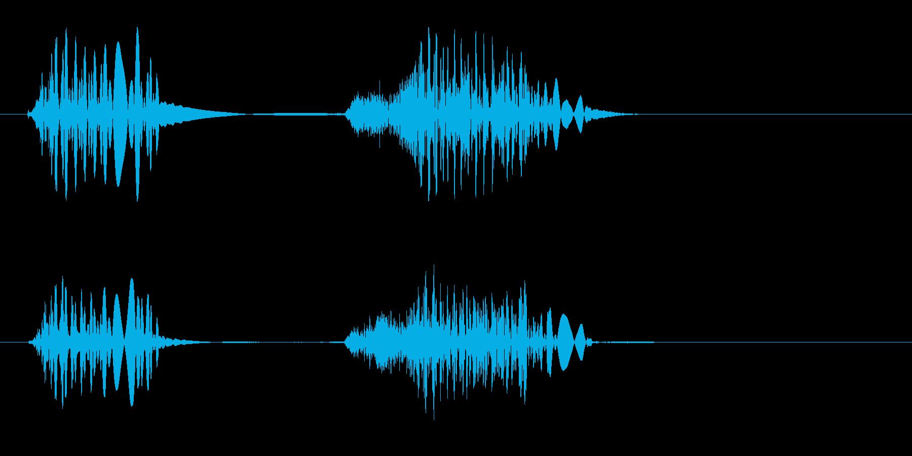 ベチョ、という何かがくっつくような音の再生済みの波形