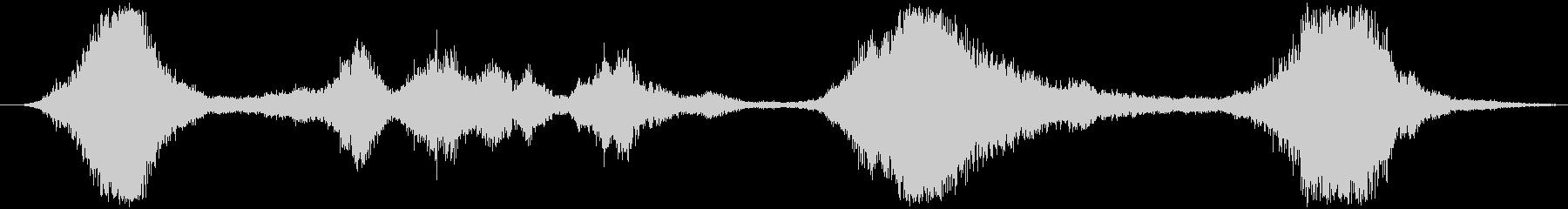 加工されたホイーリングフーシュの未再生の波形