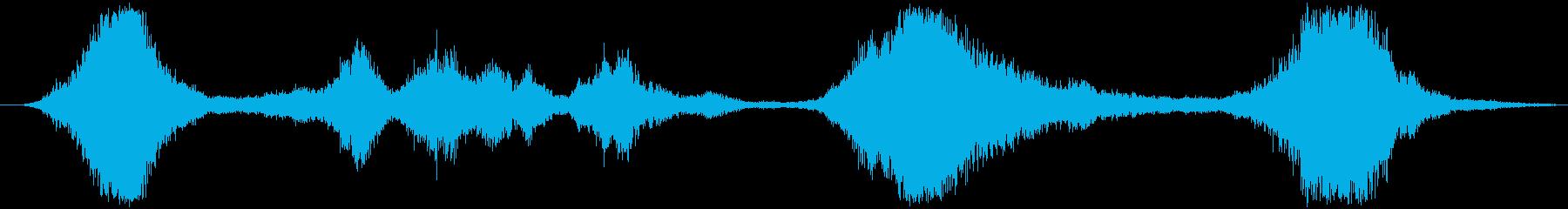 加工されたホイーリングフーシュの再生済みの波形