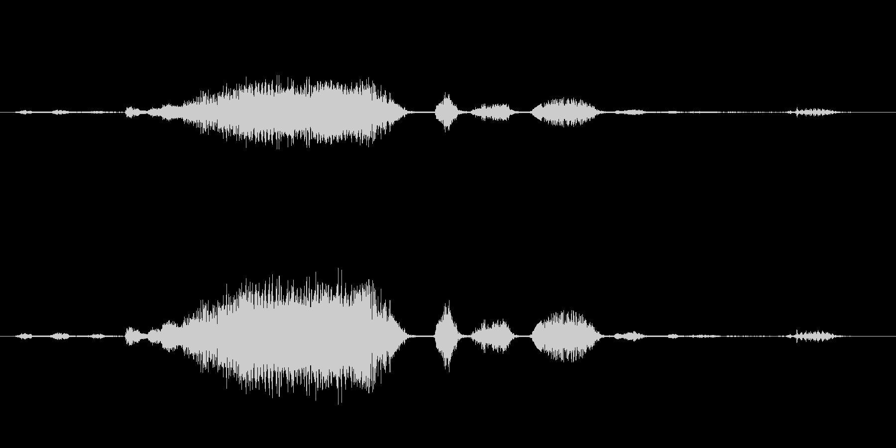 ロバ 泣き文句04の未再生の波形