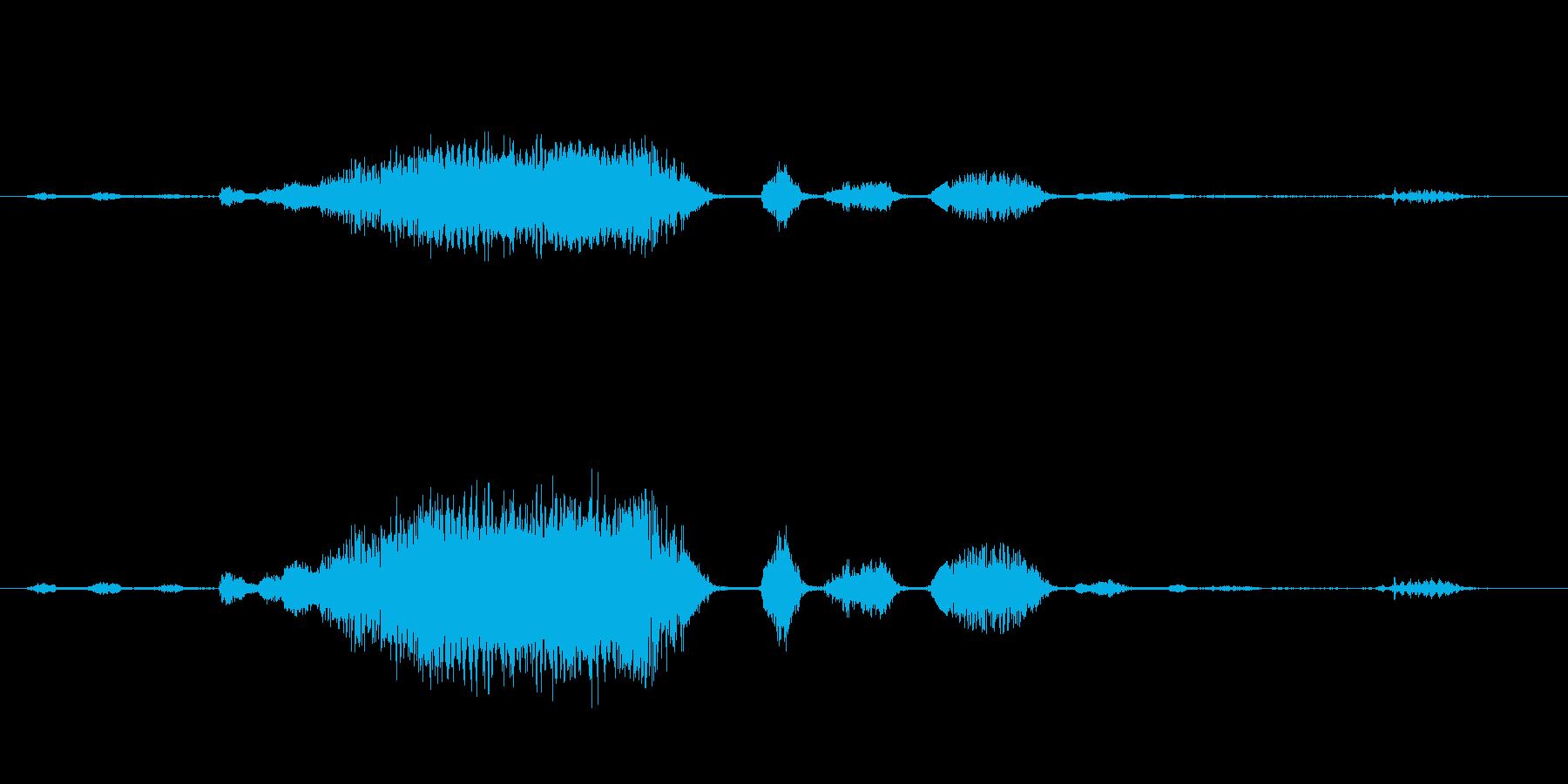 ロバ 泣き文句04の再生済みの波形