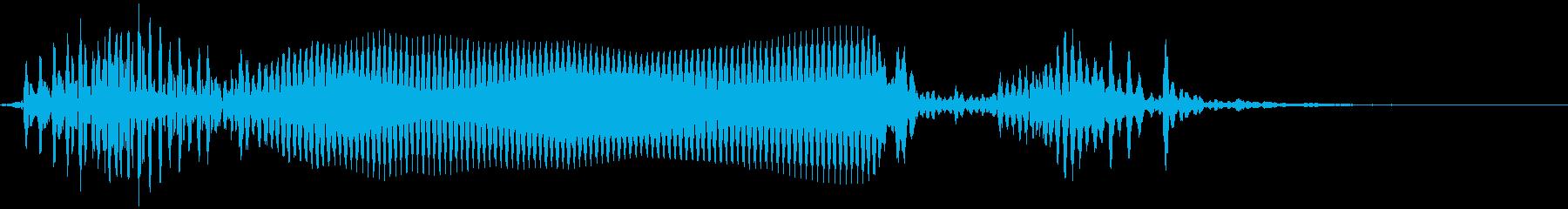 ホーン:面白いパーティーアイテム。の再生済みの波形