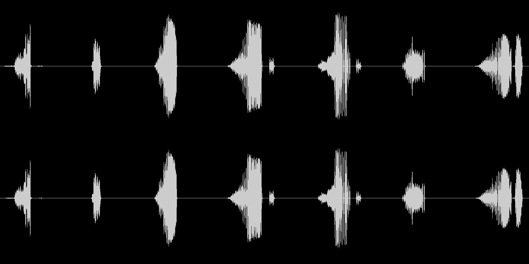 さまざまな金切り声の未再生の波形