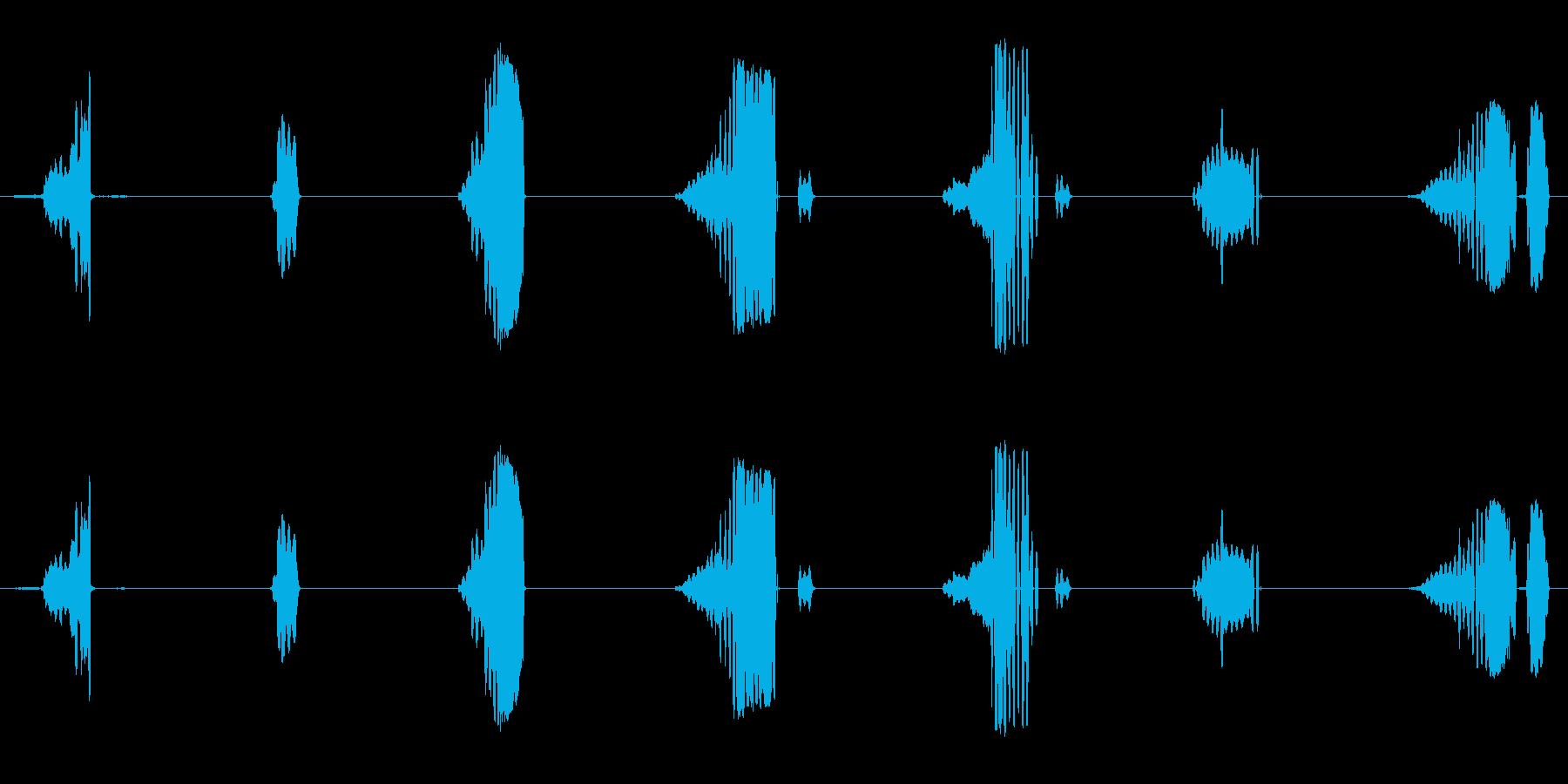 さまざまな金切り声の再生済みの波形