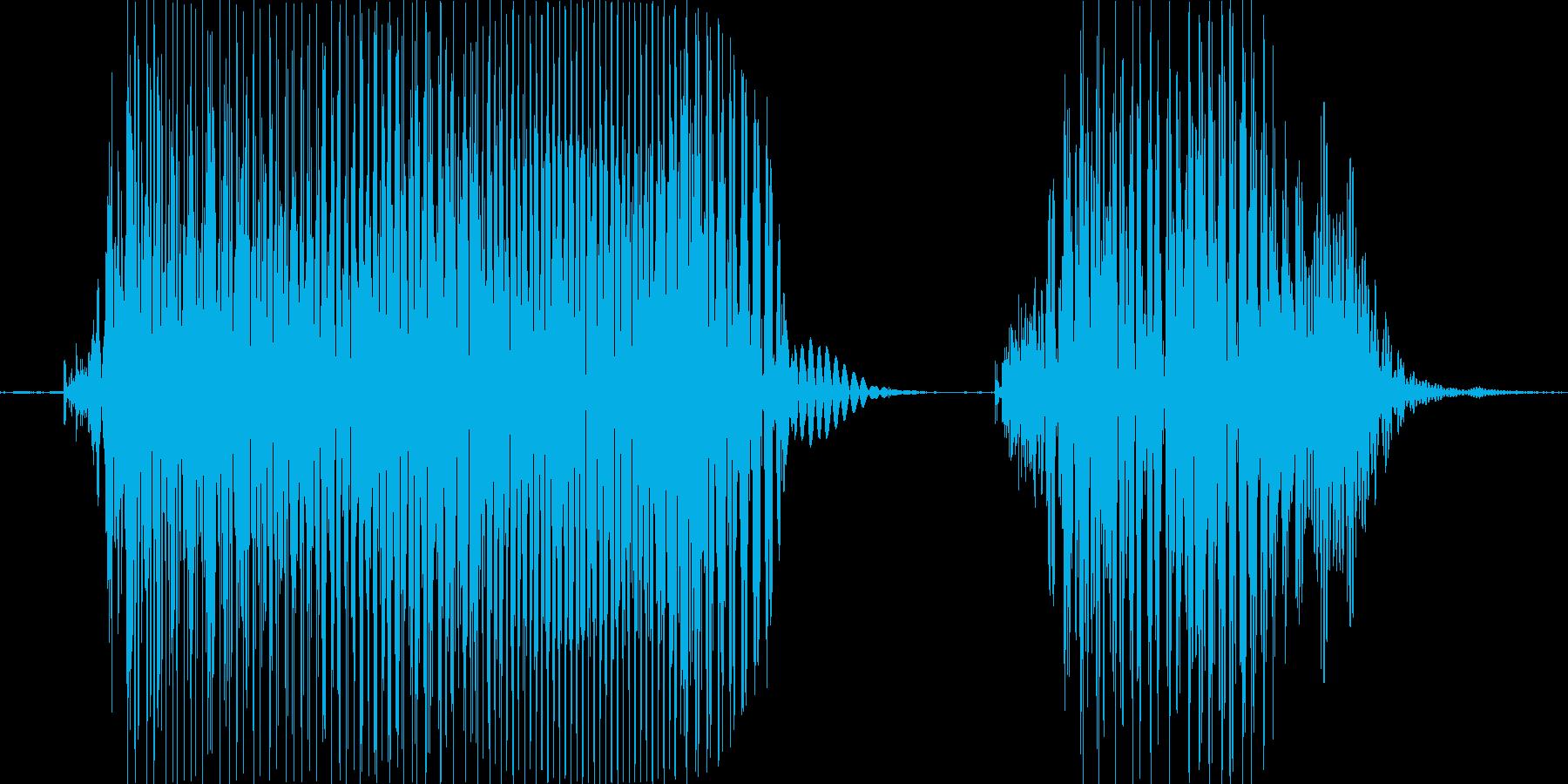 ダウト!の再生済みの波形