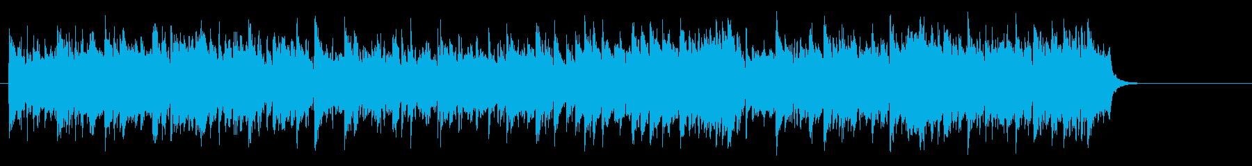 大自然の安らぎのミディアム・バラードの再生済みの波形