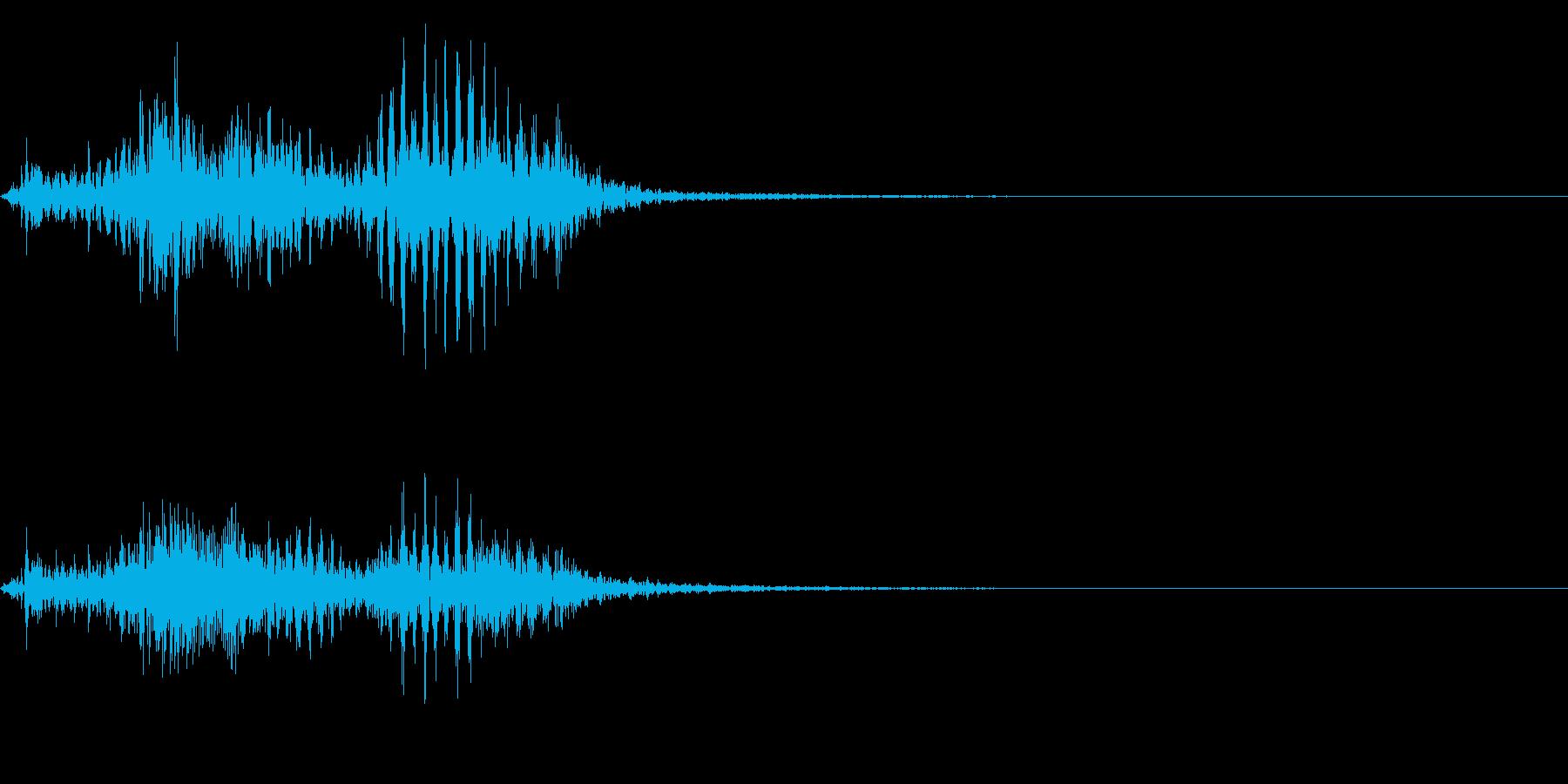 【生録音】フラミンゴの鳴き声 37の再生済みの波形