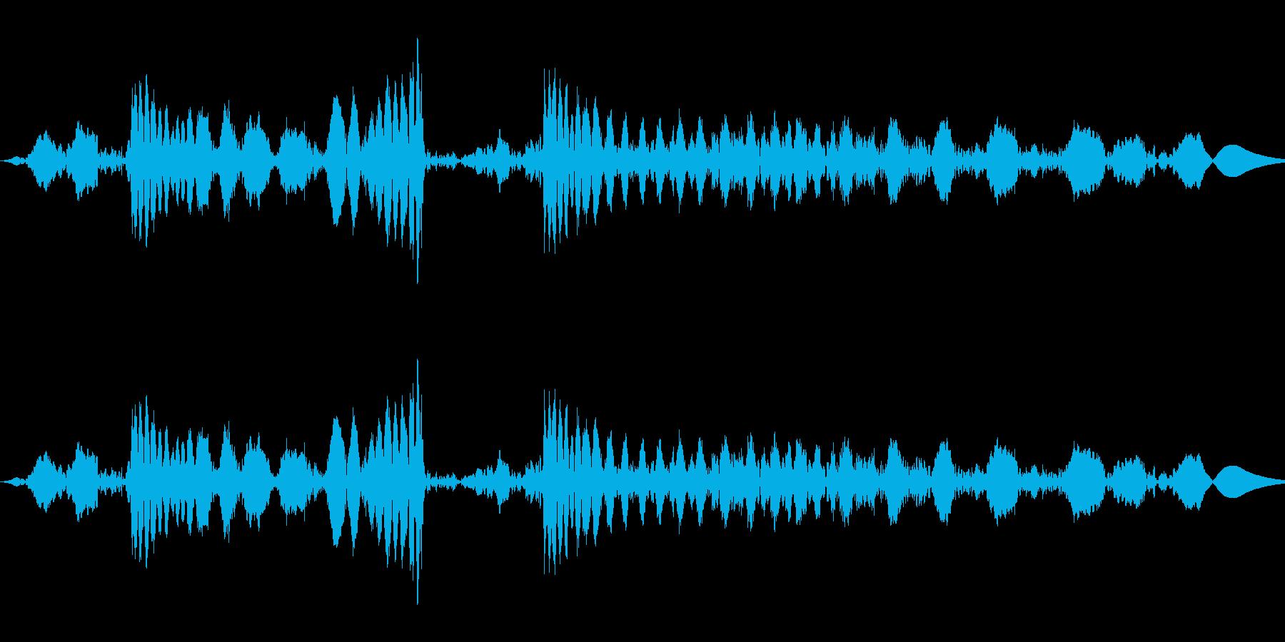 ジュクジュー:レコードのスクラッチ:モノの再生済みの波形