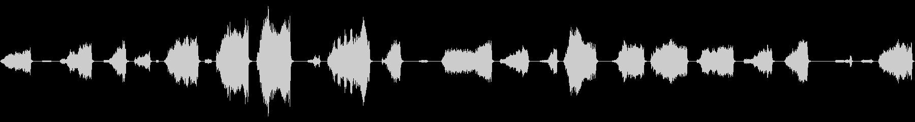 グランツの鳴き声の未再生の波形