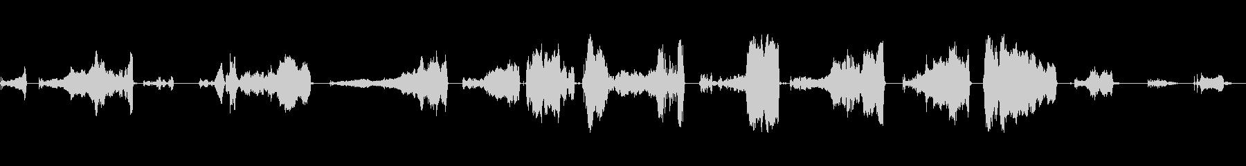 ロシアのイノシシ:他の野生動物の鳴...の未再生の波形