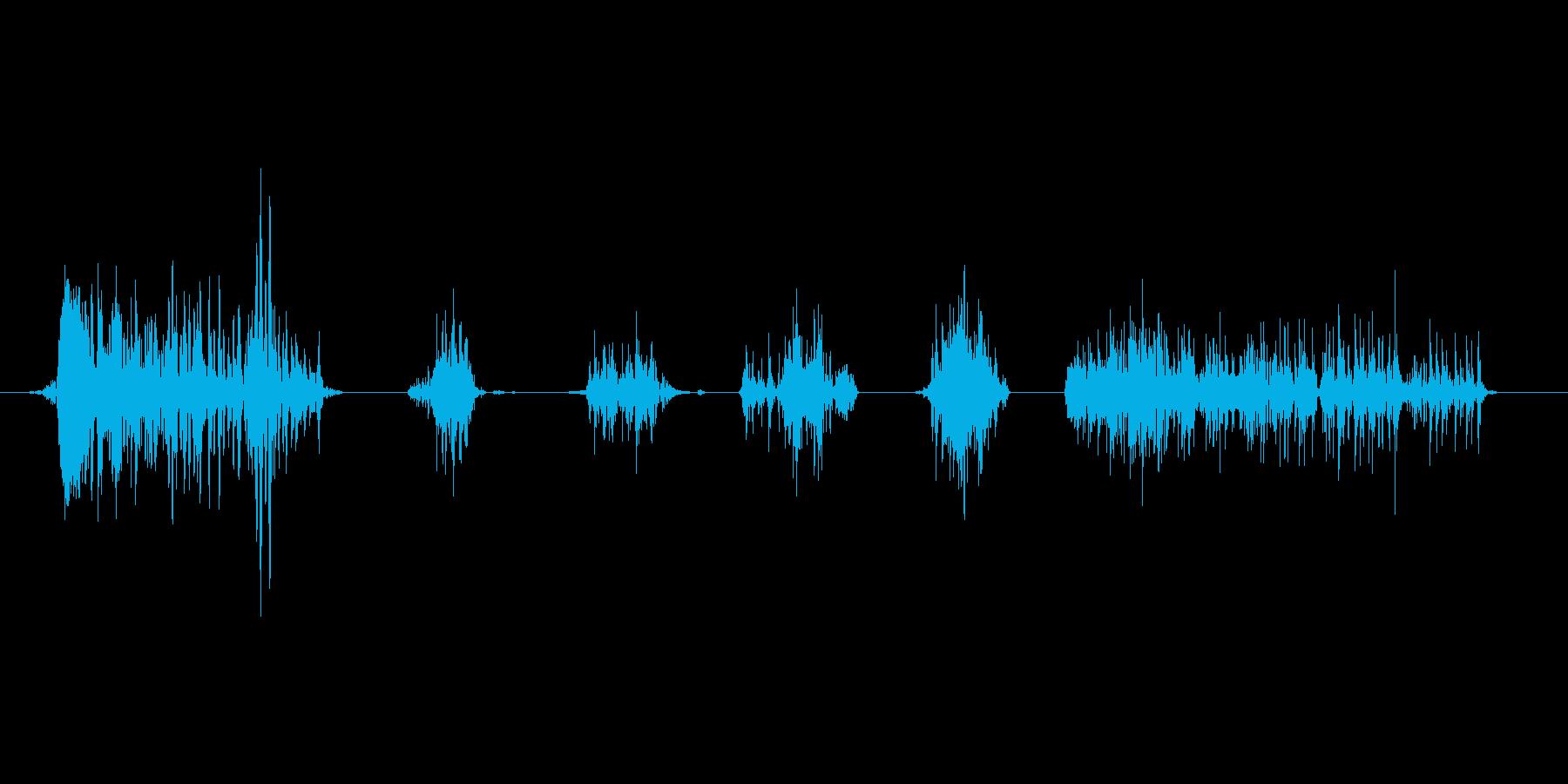 怪物の笑い声「わーはっはっは」1の再生済みの波形