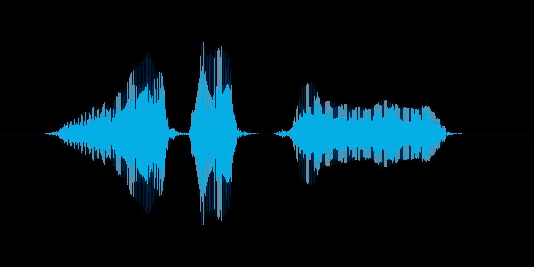 ロード中の再生済みの波形