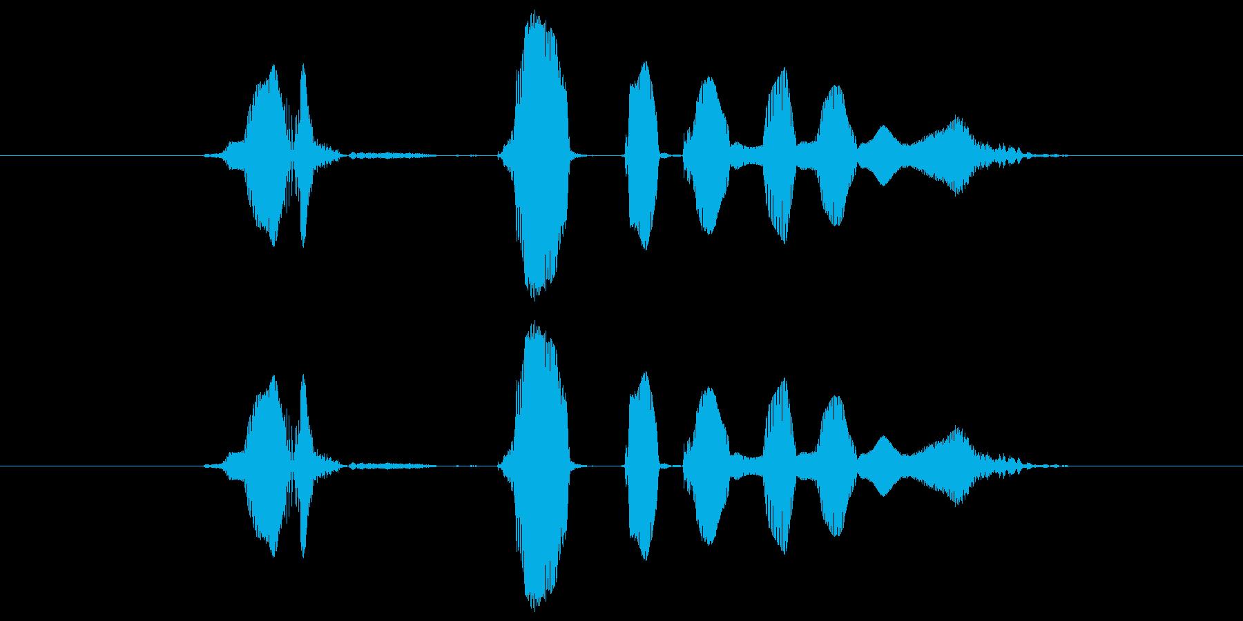 ま、ざっとこんなもんねの再生済みの波形