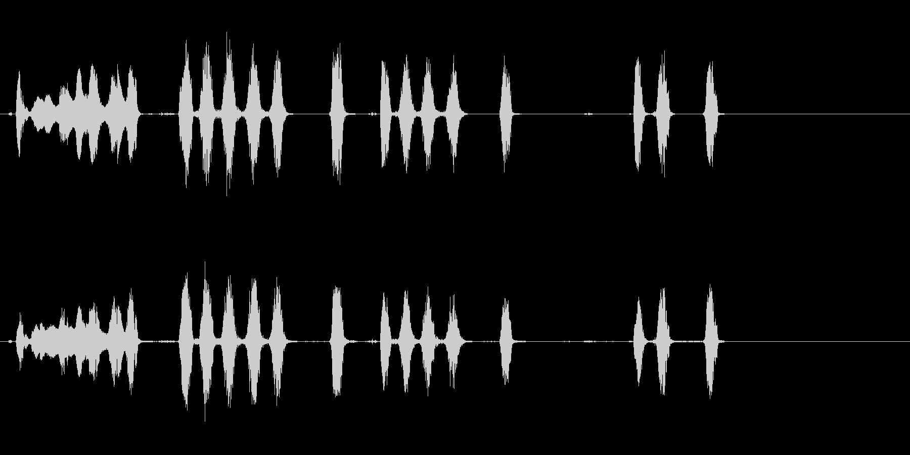 ドッグバーキング1、動物; DIG...の未再生の波形