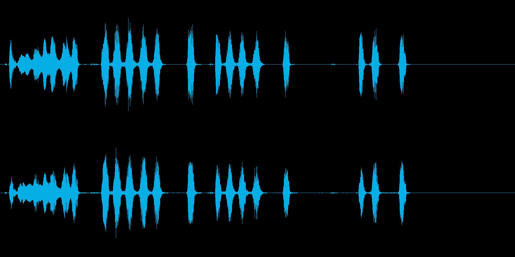 ドッグバーキング1、動物; DIG...の再生済みの波形