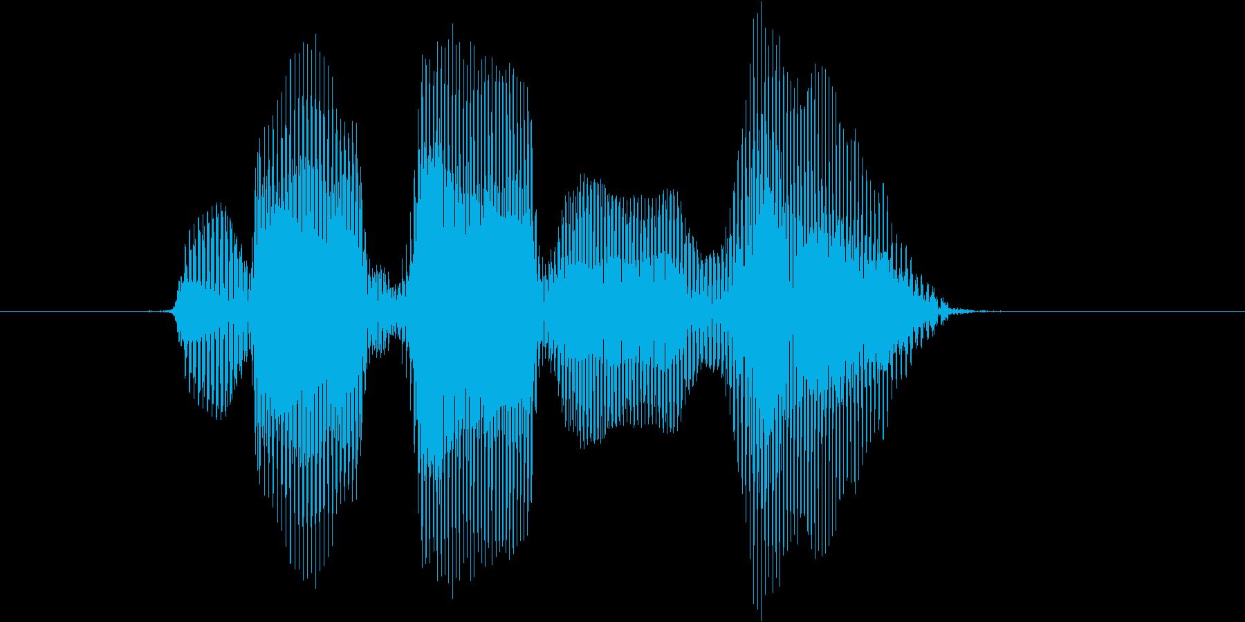 レベル1(わん)の再生済みの波形