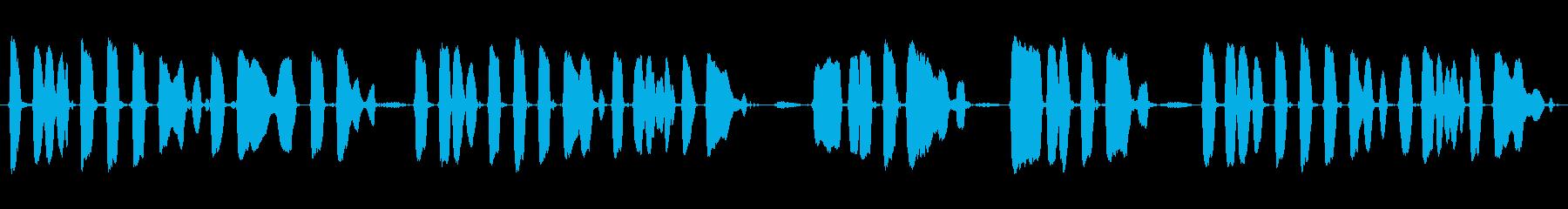 ミュージカルチューン:「キャンプタ...の再生済みの波形