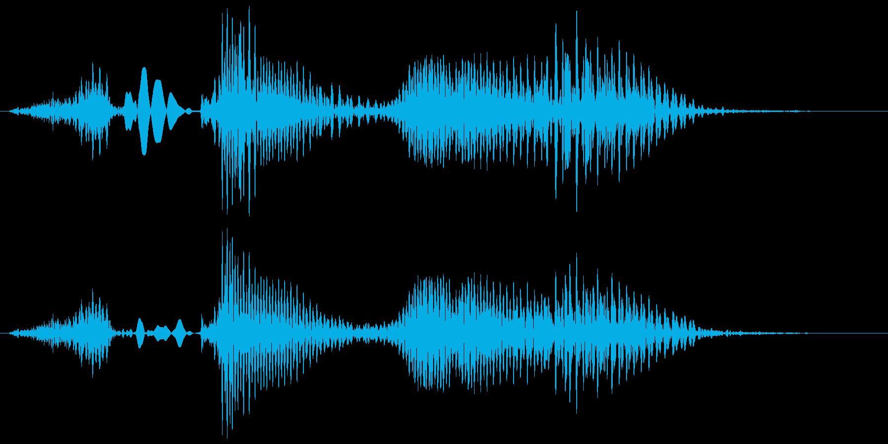 ハッピーハロウィン (モンスターボイス)の再生済みの波形